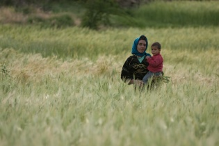 Mother and child in the wheat fields.