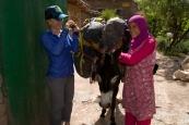 20130512_EricksonK_Morocco_281