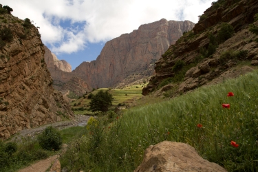 20130516_EricksonK_Morocco_2051